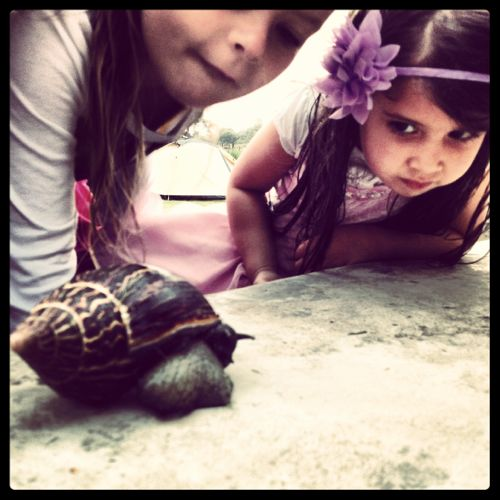 Selah studies a giant snail with Jensen